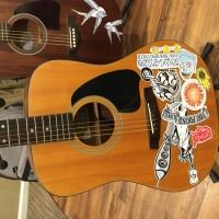 Mark DeRose Music branded Ibanez Acoustic